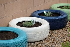 tire planters photos