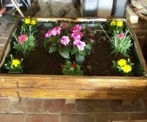 wood pallet planterplans