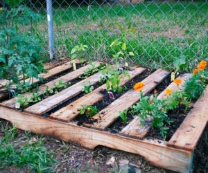 Easy Pallet Planter