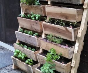 wood pallet wall planters