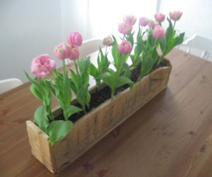 Decorative Pallet Planter