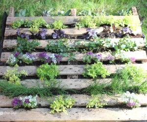 pallet wood garden planter