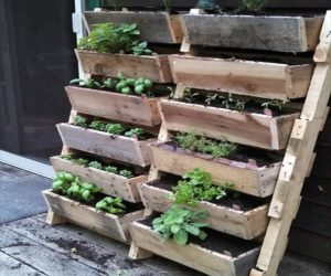 wood pallet planter ideas