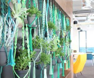 Macramé Plant Hanger Picture